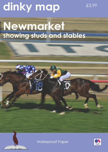 Dinky Map Newmarket showing studs and stables